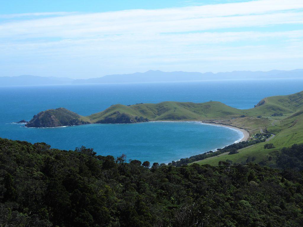 Blick auf die Bucht von Port Jackson von einem Hügel aus.