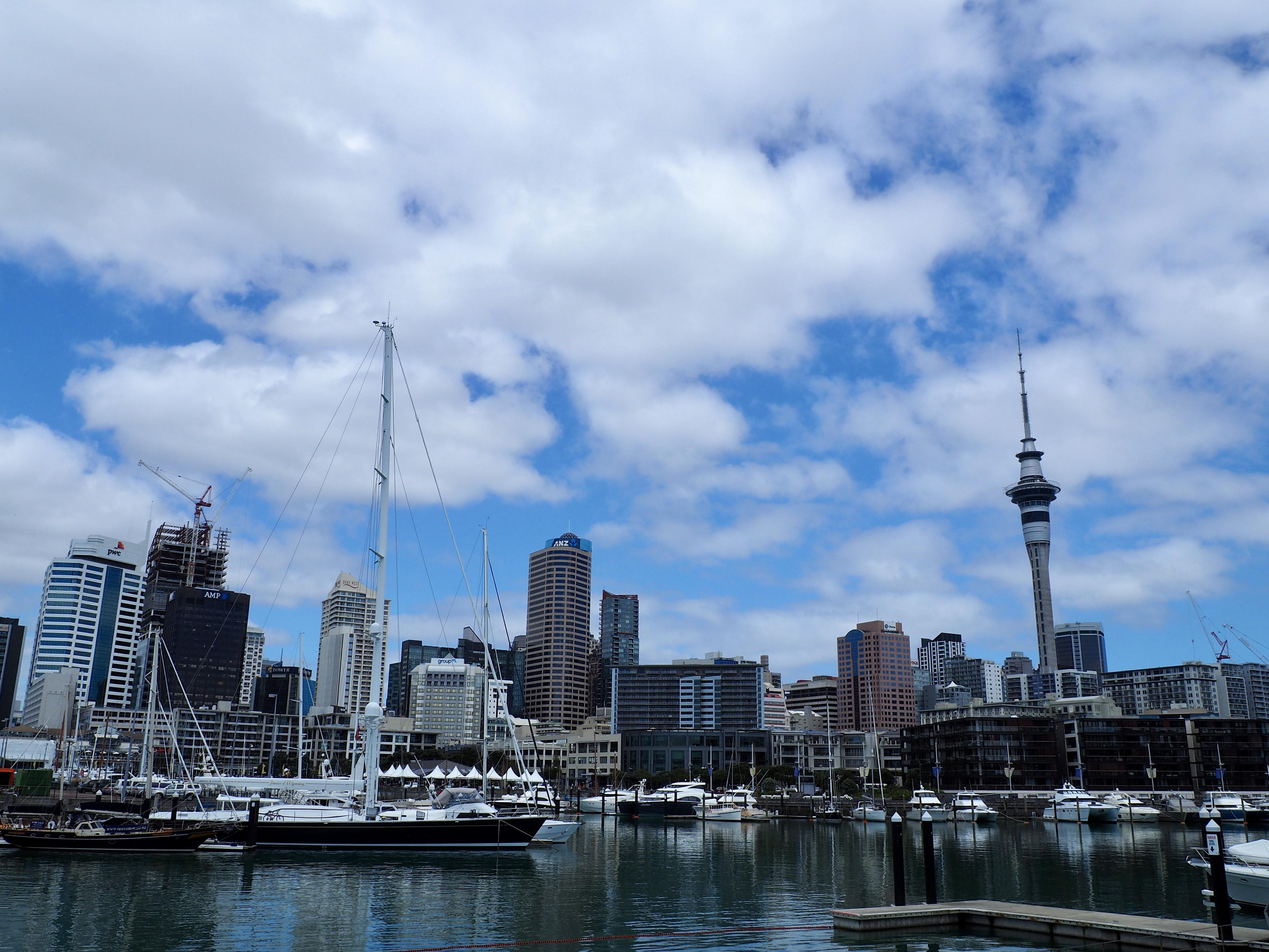 Die Skyline hinter dem Hafen von Auckland