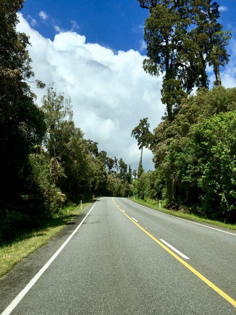 Eine Straße umgeben von vielen Bäumen und Pflanzen.