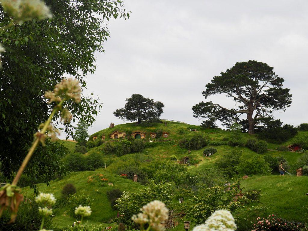 Ein Blick auf grüne Hügel und kleine Türen im Filmset Hobbiton.